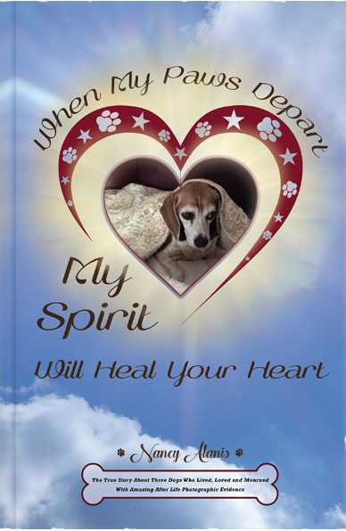 When My Paws Depart Book